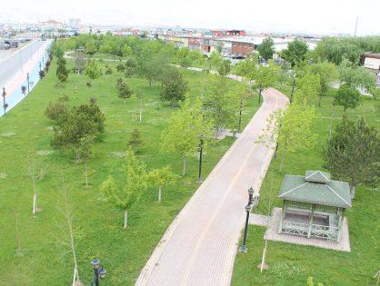 Hacıveyiszade Mahallesi Ticari Taksi Hizmetleri